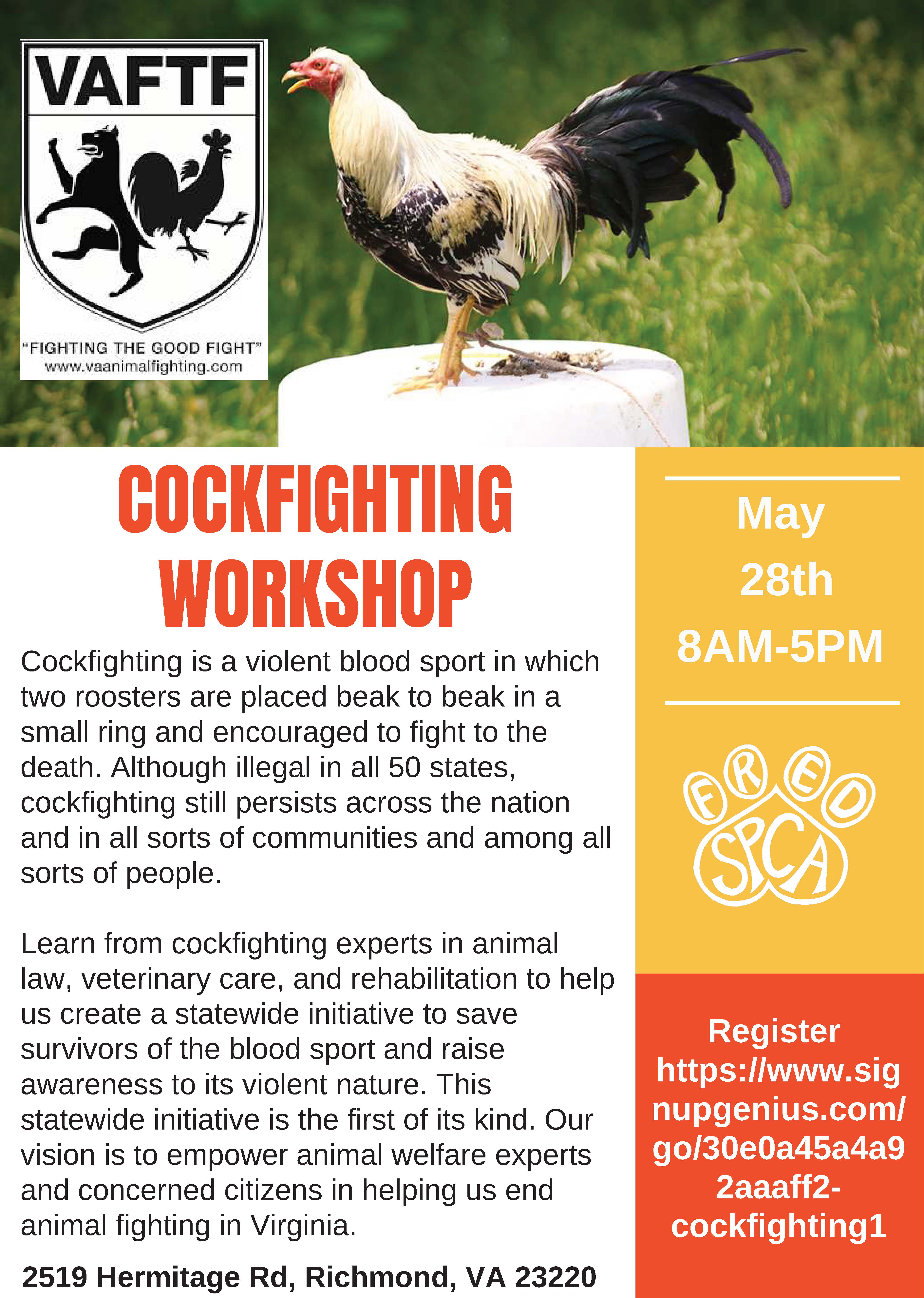 Cockfighting Workshop image preview